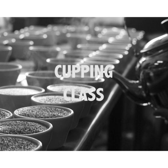 11月CUPPING 教室!!