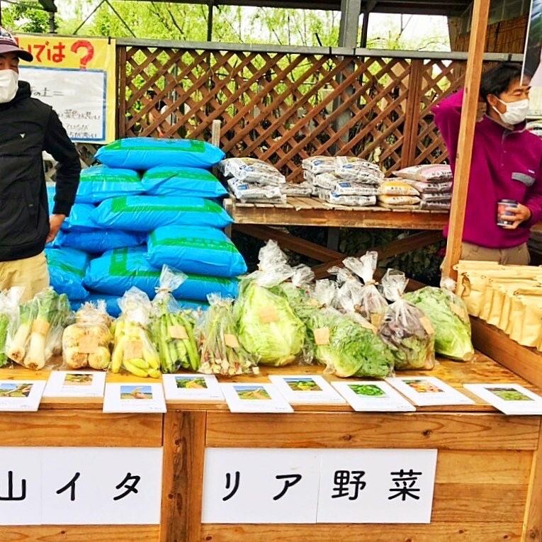 """【マヌアプロジェクト】野菜がおいしい""""カレー鍋のつゆ""""の販売がスタート!"""