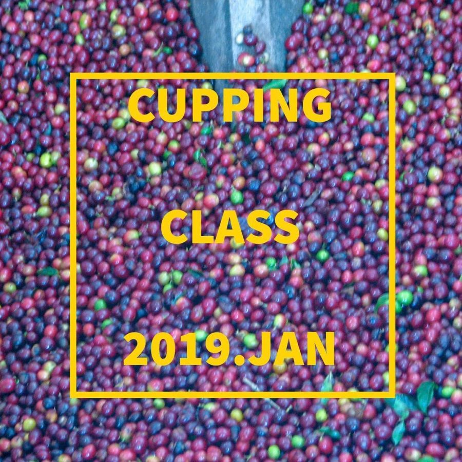 1月 カッピング教室